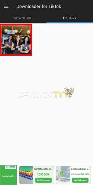 Galeri Download Video TikTok