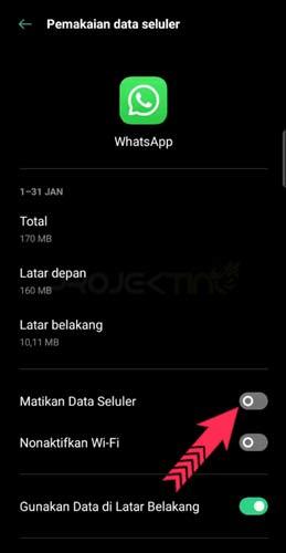 Matikan Data Whatsapp