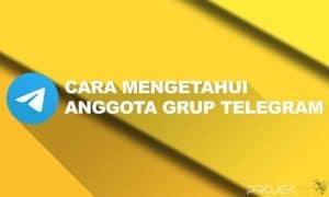 Cara Mengetahui Anggota Grup Telegram
